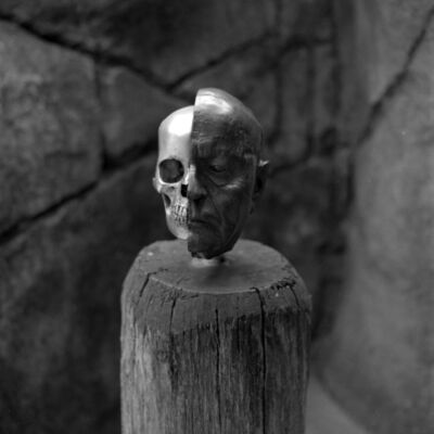 Thaddeus Holownia, 'Human Skull ', 2017