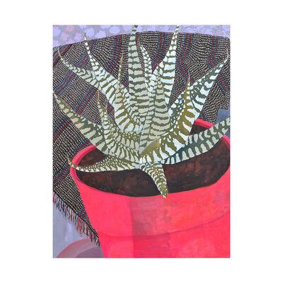 Anna Valdez, 'Zebra Succulent', 2015