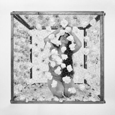 Romina de Novellis, 'La Gabbia (triptych)', 2016