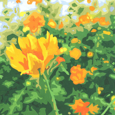 James Oliver (1972), 'Wildflower Composition (California Poppy#12)'