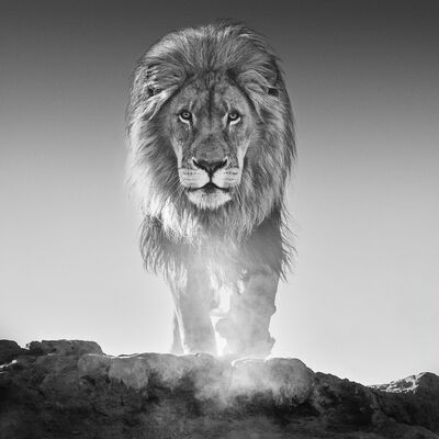 David Yarrow, 'The Old Testament', 2017