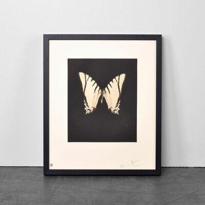 Damien Hirst, 'Spirit', 2011