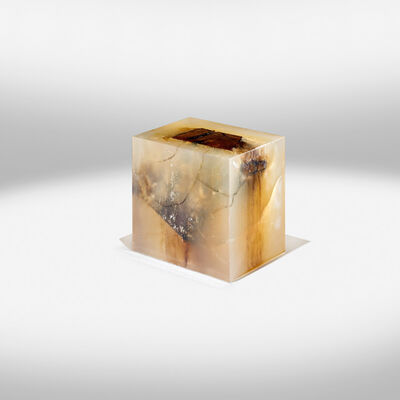 Nucleo, 'Wood Fossil Solid', 2013