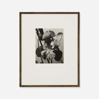 Man Ray, 'Iris', 1926