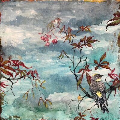 Christopher Reilly, 'Resting Warbler ', 2020