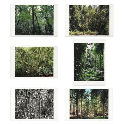 Thomas Struth, 'Paradies', 2004