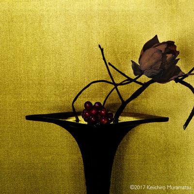 Keiichirô Muramatsu, 'scarlet kadsura / lotus', 2017