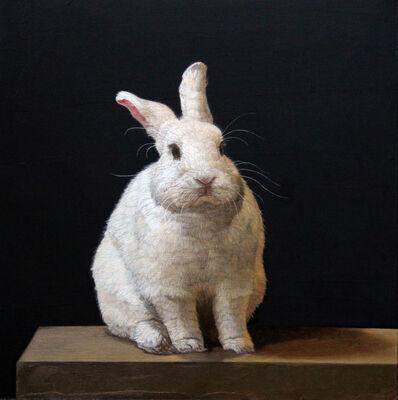 Patricia Traub, 'Hybrid Rabbit', 2014