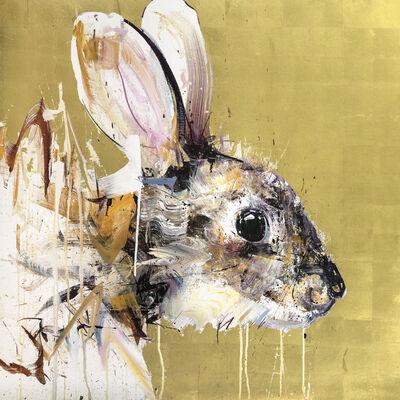 Dave White, 'Rabbit'