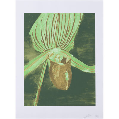Luc Tuymans, 'Orchid', 2013