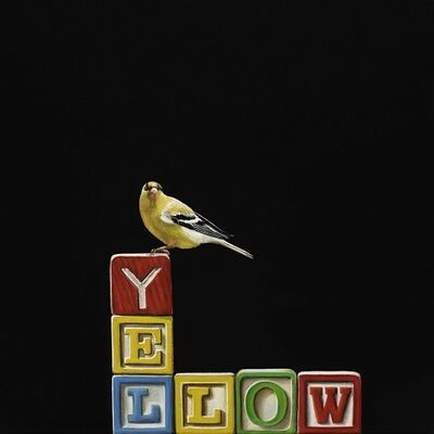 Karen Hollingsworth, 'YELLOW', 2019