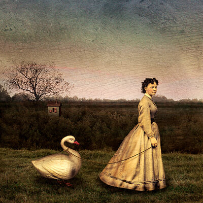 Maggie Taylor, 'Woman with Swan, 2002', 2002