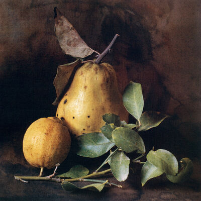 Cy DeCosse, 'Autumn Quince and Lemon '