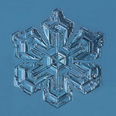 Douglas Levere, 'Snowflake 2015.01.26.001', 2015