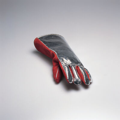Roman Signer, 'Fireman's Glove with Photograph (for Parkett 45)', 1995