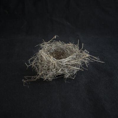 Kate Breakey, 'Nest IV', 2018