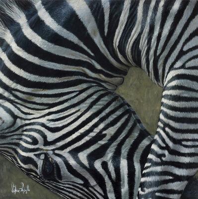 Stefano Zagaglia, 'Zebra bows', 2016