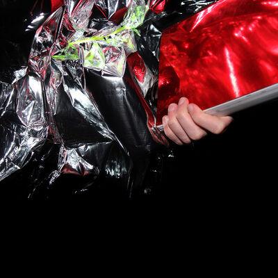 Sascha Weidner, 'Hanami: Reflection II', 2013