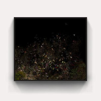 James Seow, 'The Garden Path', 2019