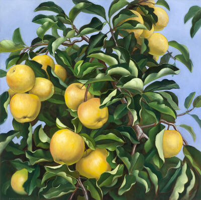 Denise Mickilowski, 'Golden Orchard Apples', 2017