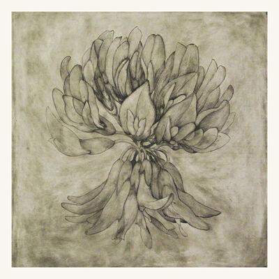Liz Parkinson, 'White (Clover)', 2014