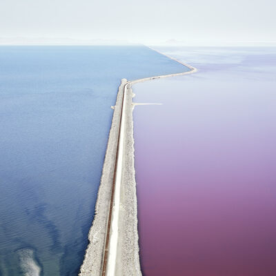 David Burdeny, 'Photosynthetic 2'