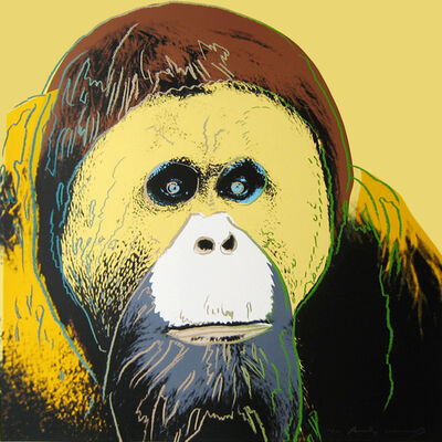 Andy Warhol, 'Orangutan, from the Endangered Species Portfolio', 1983