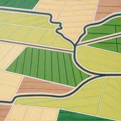 Richard Stein, 'Rice Fields Convergence', 2018