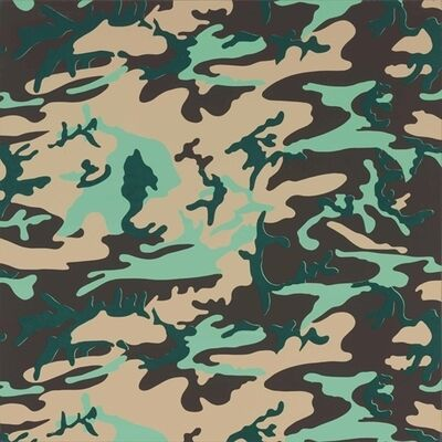 Andy Warhol, 'Camouflage'
