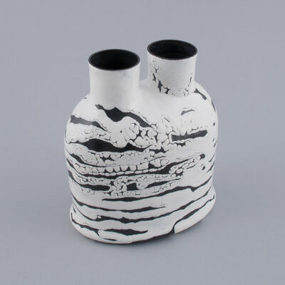Myra Mimlitsch-Gray, 'Black and White Double Spout', 2014
