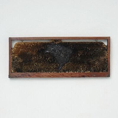 Ricardo Siri, 'Pindorama 01', 2020