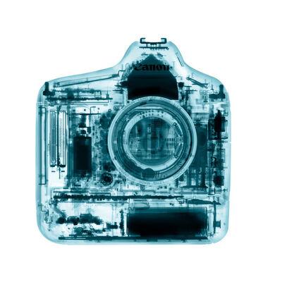 David Arky, 'Canon Camera', 2019
