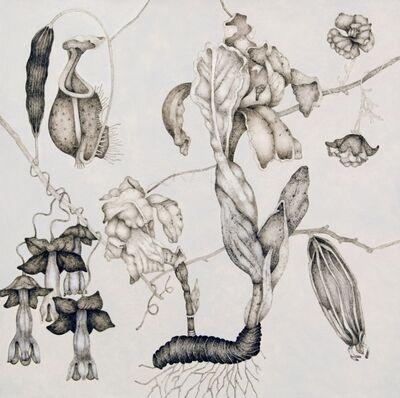 Timothy Berry, 'Bianco Eden Series IV', 2007