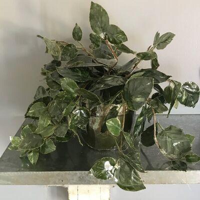 """Nassem Navab, 'Plastic Potted Plant from """"Refuge"""" installation ', 2019"""