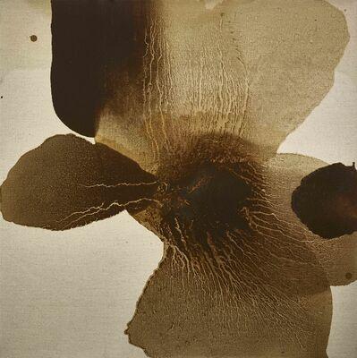 Mao Lizi, 'Ambiguous Flower', 2015