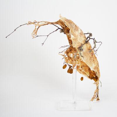 Frances Vye Wilson, 'RELEASED', 2016