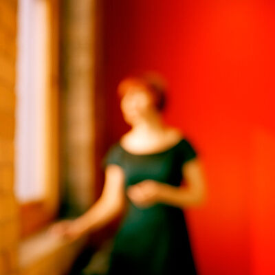 Virginia Mak, 'Of One's Own #8', 2011