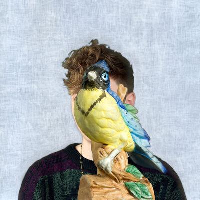 Helen Sear, 'Sightlines, Untitled 8', 2011