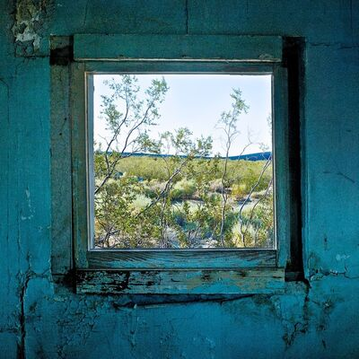 Osceola Refetoff, 'Window with Creosote Bush - Dunmovin, California, 2010'
