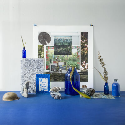 Mary Mattingly, 'On Being Blue', 2018