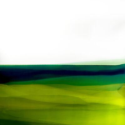 Giacomo Montanaro, 'Interior Landscapes # 14', 2017