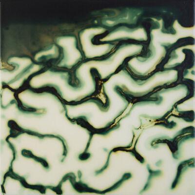Jaq Chartier, 'Brain Coral'