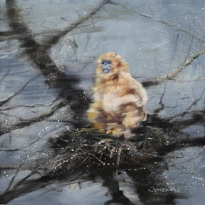 Li Tianbing, 'Golden Monkey On The Snow Tree', 2019