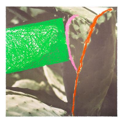 John Baldessari, 'Cactus (#4 from Third Street, Santa Monica)', 2000