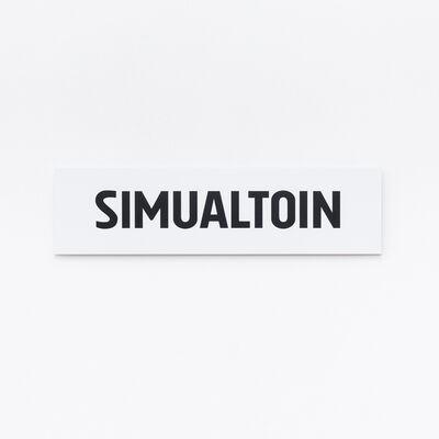 Adib Fricke, 'SIMUALTOIN', 2021
