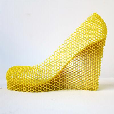Sebastian Errazuriz, 'Honey, from the Series 12 Shoes for 12 Lovers', 2013
