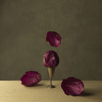 Marie Cecile Thijs, 'Red Cabbage', 2013