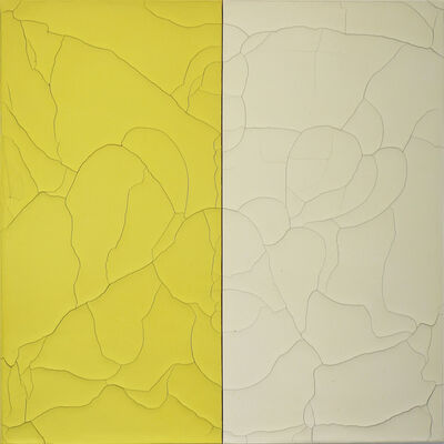 Susan Gunn, 'Divided Ground: Acid Yellows', 2013