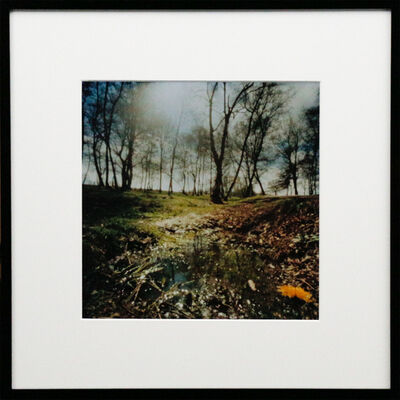 Dianne Bos, 'Hill 62 Crater, Flanders, Ed./1', 2015