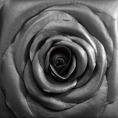 Cai Zhisong 蔡志松, 'Rose', 2010